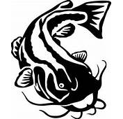 Catfish Drawing  Free Download Clip Art