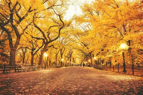 imagenes de otoño y primavera oto 241 o en nueva york turismo nueva york