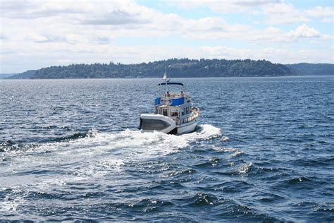 boating license seattle planning on boating this summer do you possess a boater