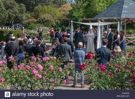 St Kilda Botanical Gardens Wedding Wedding Ceremony Stock Photos Wedding Ceremony Stock Images Alamy