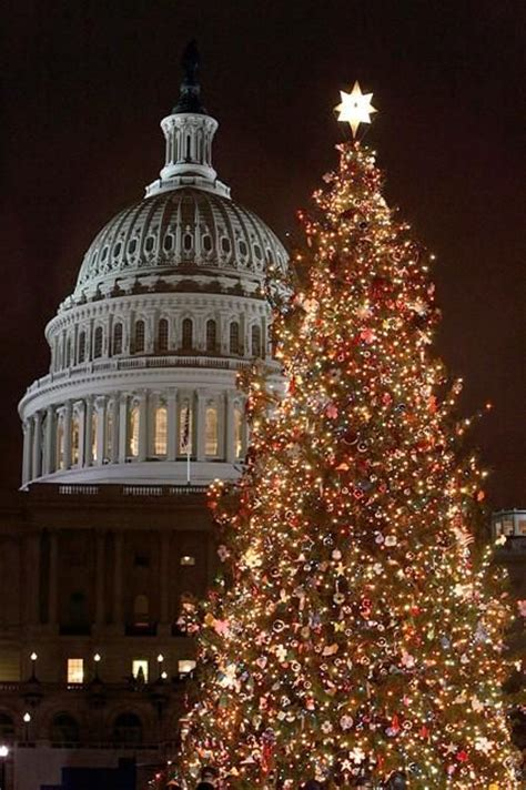 washington dc oh christmas tree pinterest