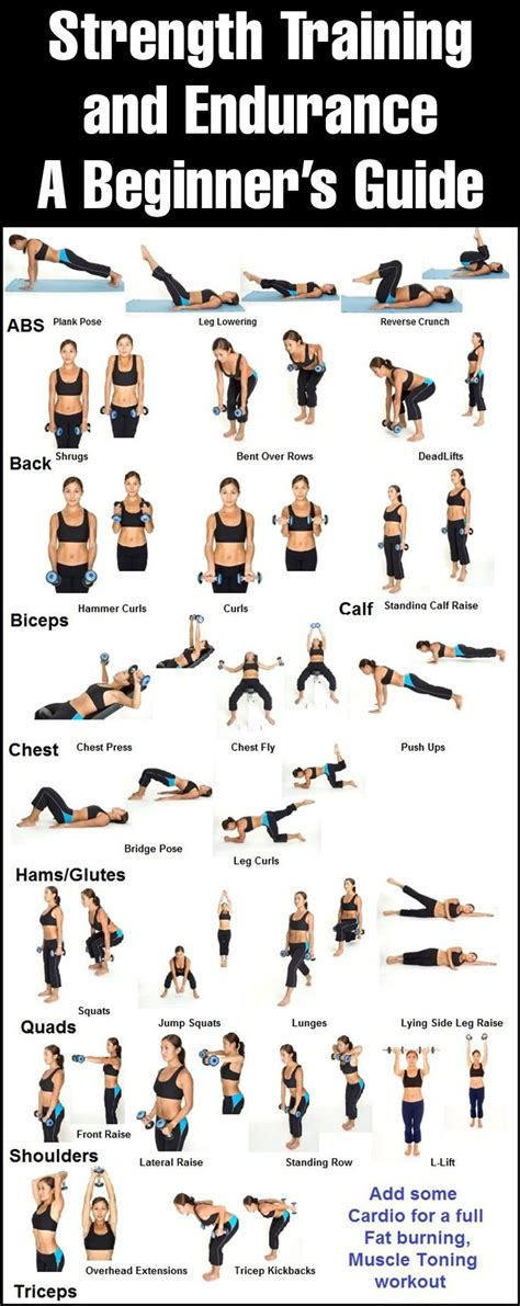 beginner workout plan for women at home 25 best ideas about easy beginner workouts on pinterest
