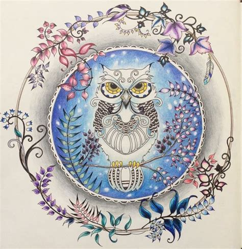 willow s world coloring book owls books owl enchanted forest coruja floresta encantada johanna