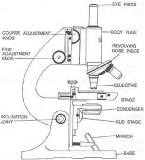 what part of the microscope regulates the amount of light science