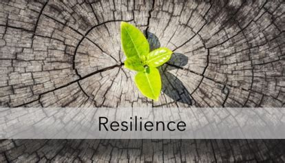 resilience in the face of adversity tocagen