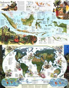 indonesia good design selection explore indonesia asia society kids maps pinterest