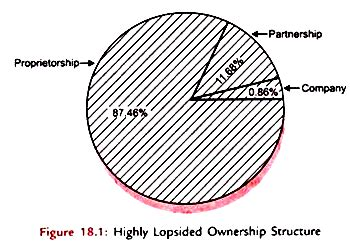 pattern of business ownership ownership pattern in micro and small scale enterprises in