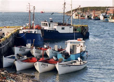 small fishing boats of newfoundland fisherman s road are the little boats of newfoundland doomed