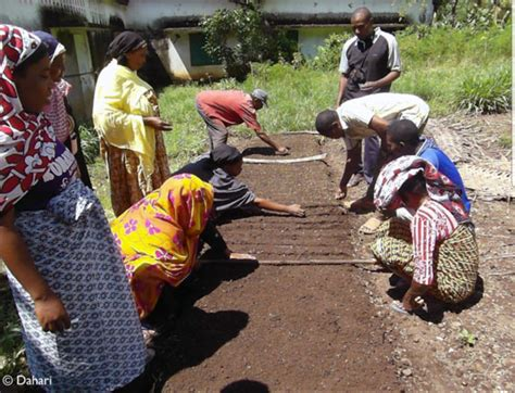 chambre agriculture 47 chambre d agriculture momo 233 lu pr 233 sident comores infos
