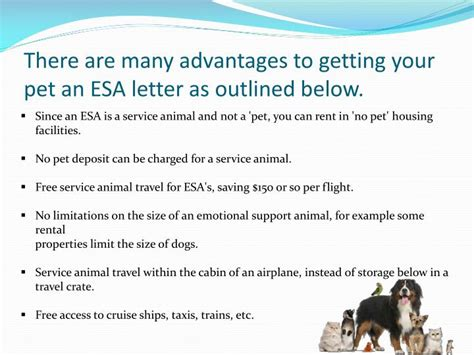 comfort animal letter ppt emotional service animal travel with letter