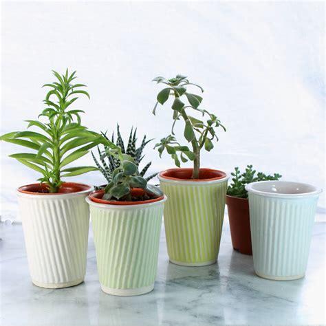 succulent pot ceramic planter by helen rebecca ceramics