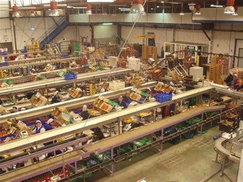 cadenas industriales costa rica industrias alimentarias