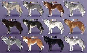 wolf fur colors wolf adoptables 2 closed by nature ridge adopts