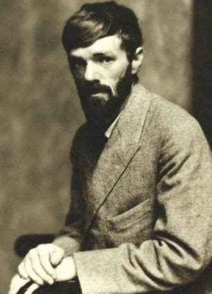 themes in dh lawrence short stories dh lawrence s lady chatterley inspired by publisher s