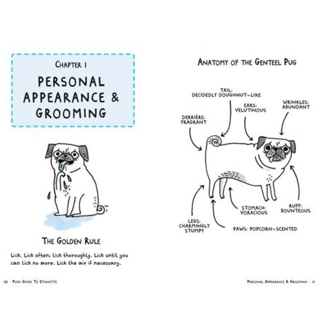 a pug s guide to etiquette a pug s guide to etiquette