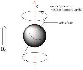 Proton Precession 14 1 An Introduction To Nmr Spectroscopy Chemwiki