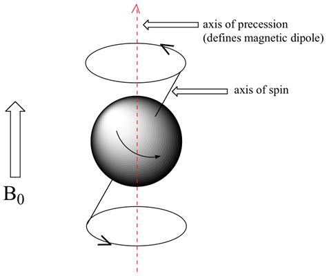 the spinning magnet the electromagnetic that created the modern world and could destroy it books the nmr signal chemwiki