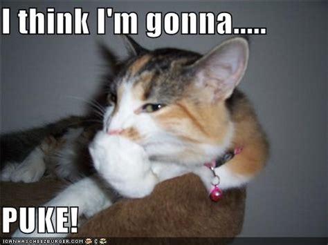 Puke Meme - puke meme 28 images 25 best memes about vomit meme