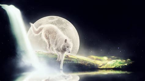 By The Light Of The Moon by By The Light Of The Moon By Deadlylupine On Deviantart