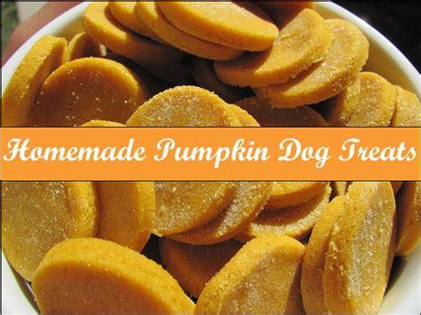 pumpkin treats for dogs 25 best ideas about pumpkin treats on pumpkin biscuits easy