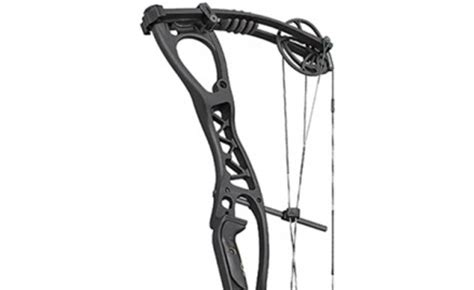 hoyt vector 32 review petersen's bowhunting
