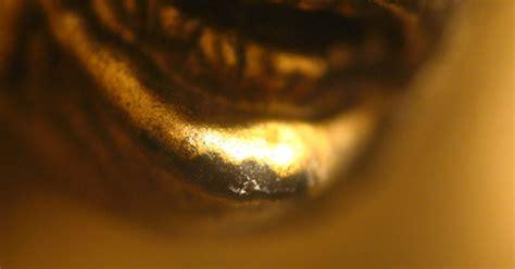 define burnish gold leaf ehow uk