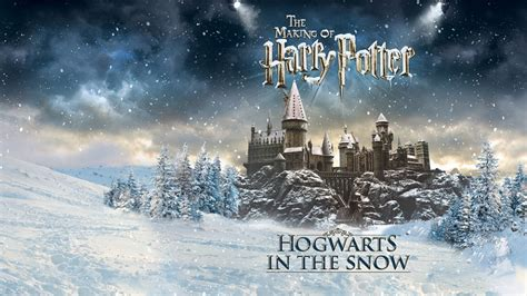 All Comments On Harry Potter Owned A Snow Owl This Is A - warner bros studio tour the of harry potter