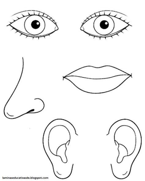 imagenes ojos nariz boca orejas laminas educativas los 5 sentidos