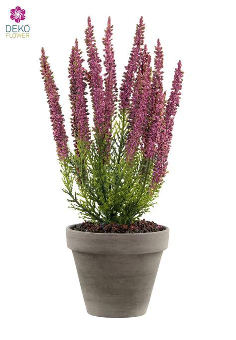 erika pflanze k 252 nstliche erika pflanze weinrot 34 cm