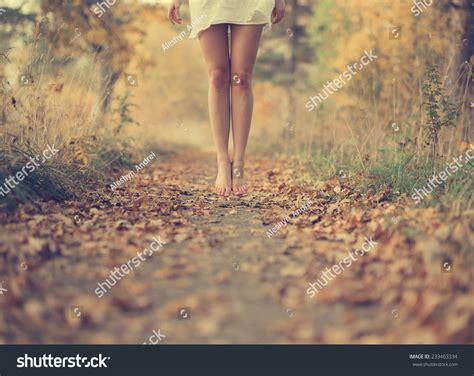 Roadmap To Beautiful Legs by Beautiful Legs Autumn Road Stock Photo 233463334