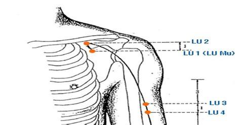 Lu Dilarang griya akupunktur madura titik meridian paru