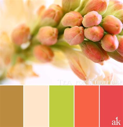 191 best images about color on