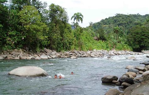Rivers Also Search For Thank You For Helping To Protect World Heritage Rivers International Rivers