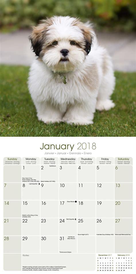 Apsu Calendar Lhasa Apso Calendar 2018 10051 18 Lhasa Apso Breeds