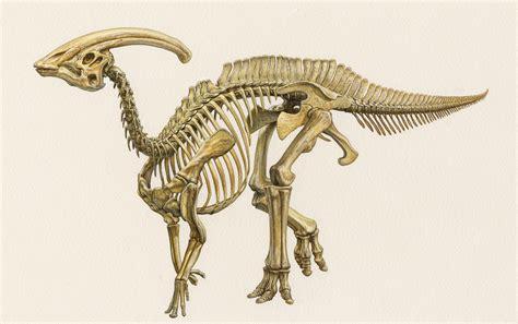 illustration dave hone s archosaur musings