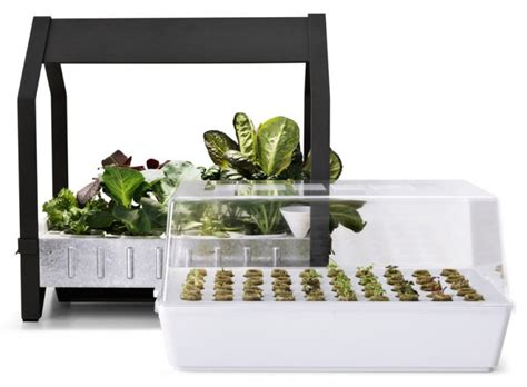 ikea garden kit krydda v 228 xer kit for indoor gardening by ikea gardenoholic