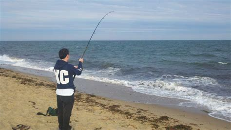 fishing report cape cod cape cod fishing report