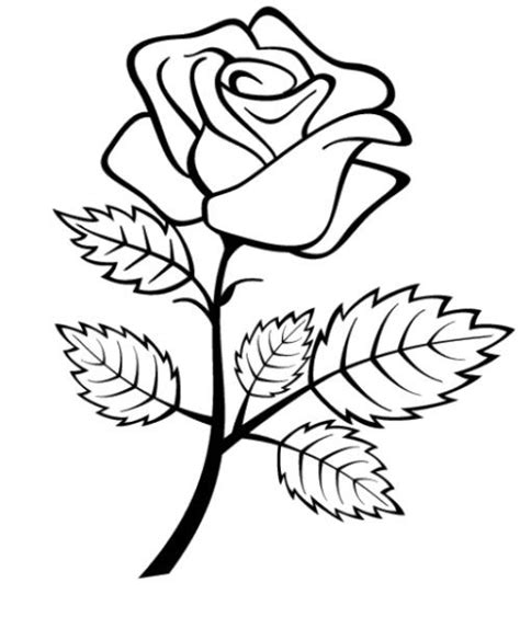 coloring pages of flowers for preschool flowers roses coloring pages for preschool coloring