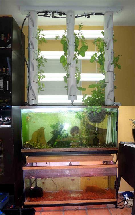aquaponic indoor read  aquaponics   review