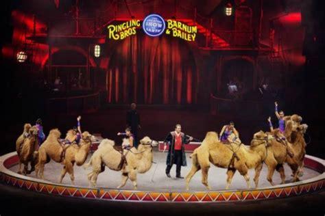 curtain call perform curtain call ringling bros barnum bailey circus will
