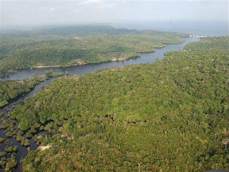 Amazonas Hängematte by Conoc 233 Mejor Las 7 Maravillas Naturales Mundo