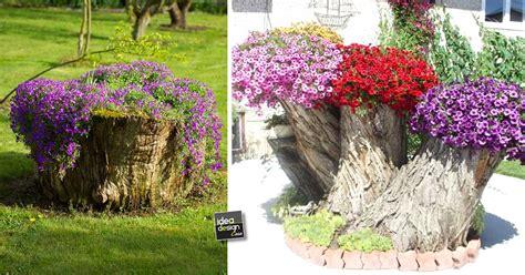 creare una creare una fioriera da un tronco d albero abbattuto 20