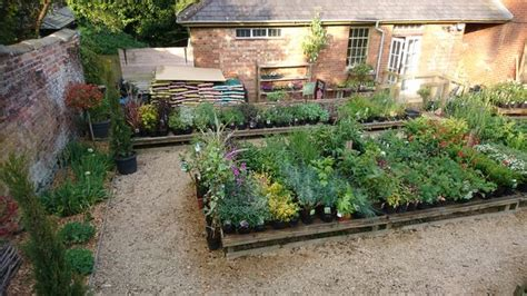 The Potting Shed In Shaftesbury Has A New Owner Somerset City Guilds Walled Garden