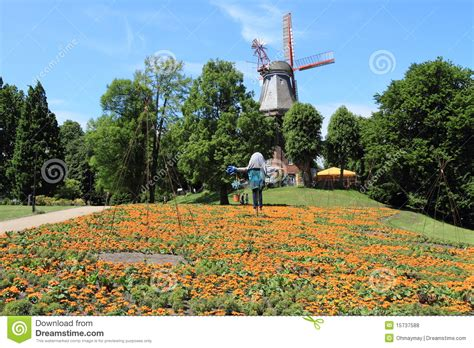 floraldesign bremen bremen wall garden in germany royalty free stock