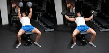 flat bench flys incline dumbbell fly bodybuilding wizard