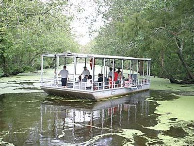 yacht boat ride in new orleans louisiana bayous private 2 hour sw boat tour