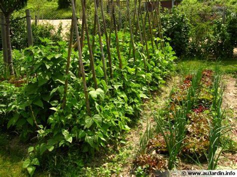 Formidable Organiser Son Jardin Potager #1: potager-organiser-600x450.jpg