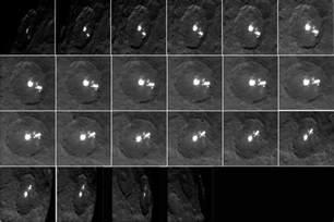 Ceres Lights by Ceres White Spots Multiply In Photos