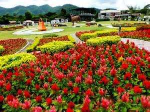 Car Rental From Bangkok To Khao Yai Hotel Near The Best Flower Venues In Khao Yai