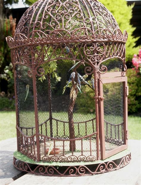 outdoor budgie bird cages bird cages